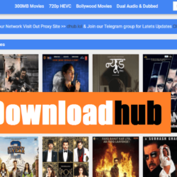 downloadhub, downloadhub movies, downloadhub mobi